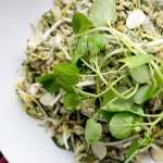 skinnymixer's Herbed Asian Salad