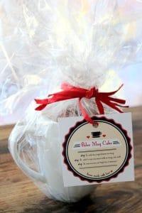 Thermomix Paleo Mug Cake Gift